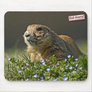 Prairie Dog Mouse Mat