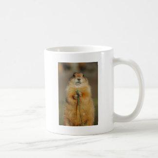 Prairie Dog Mugs
