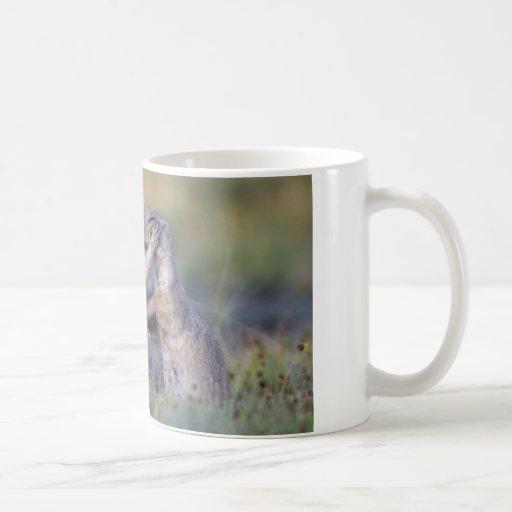 Prairie Dog Mug