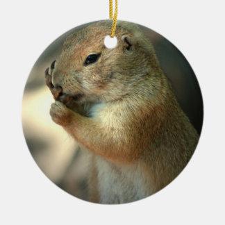 Prairie Dog Ornament