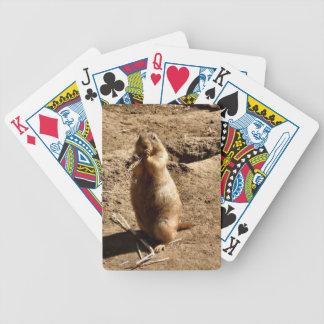 Prairie Dog Playing Cards