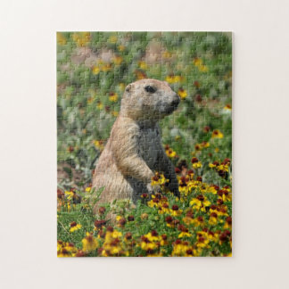 Prairie Dog Puzzle
