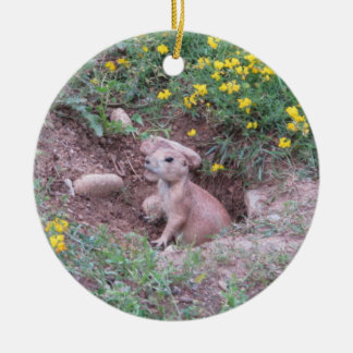 Prairie Dog Round Ceramic Decoration