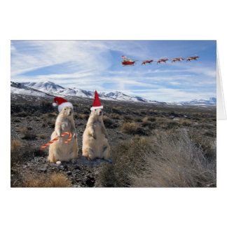 Prairie Dog Santa Card