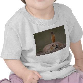 Prairie Dog Shirt
