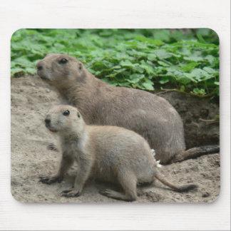 Prairie Dogs 04 Mousepad
