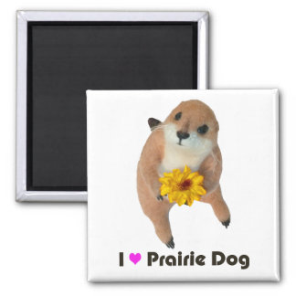 prairie dog's stuffed toy square magnet