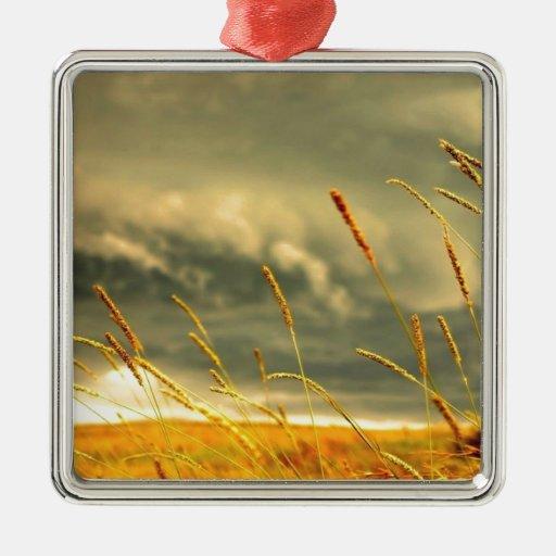 Prairie Grass Christmas Ornament
