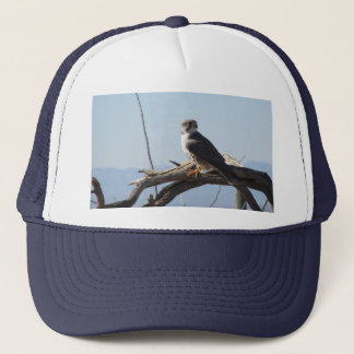 Prairie Hawk Hat
