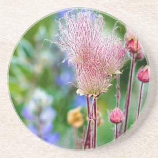 Prairie Smoke Wildflowers In Aspen Grove 2 Coaster