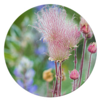 Prairie Smoke Wildflowers In Aspen Grove 2 Plate