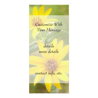 Prairie Sunflower - Helianthus maximilianii Rack Card