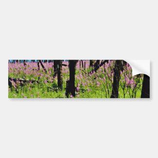Prairie wildflower, fireweed growing in forest bur bumper sticker