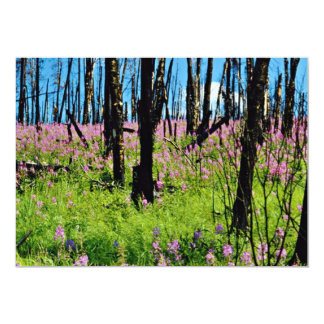 Prairie wildflower, fireweed growing in forest bur invitation