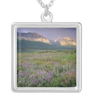 Prairie wildflowers along Lake Sherbourne in the Square Pendant Necklace