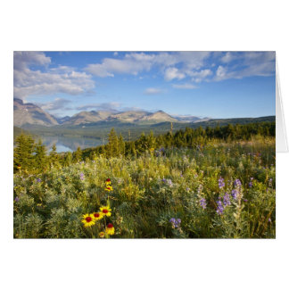 Prairie wildflowers and Lower Two Medicine Lake Card