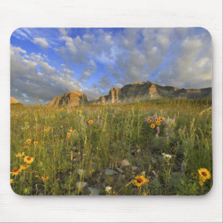 Prairie Wildflowers at Windy Creek in the Many Mouse Pad