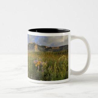 Prairie Wildflowers at Windy Creek in the Many Coffee Mugs