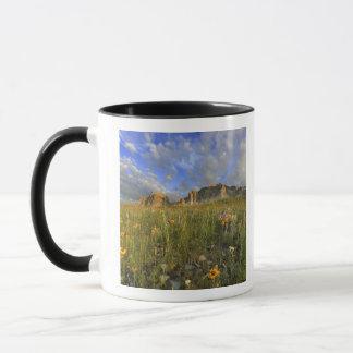 Prairie Wildflowers at Windy Creek in the Many Mug
