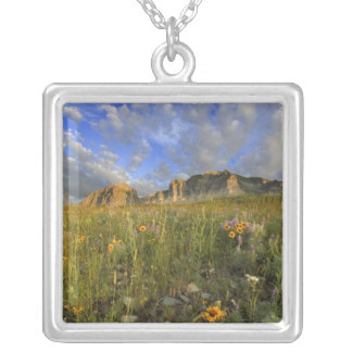 Prairie Wildflowers at Windy Creek in the Many Custom Necklace