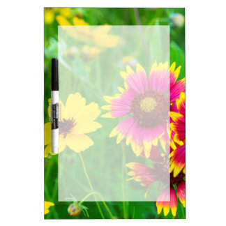 Prairie wildflowers in Hill Country Dry-Erase Boards