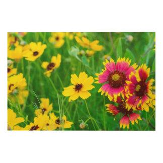 Prairie wildflowers in Hill Country Wood Print