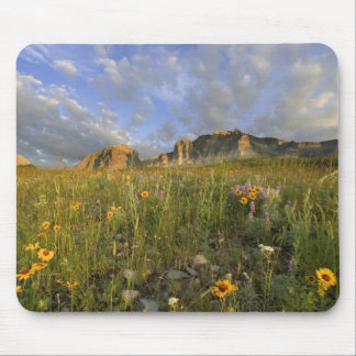 Prairie Wildflowers in Many Glacier Valley at Mouse Pad