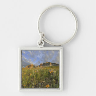 Prairie Wildflowers in Many Glacier Valley at Silver-Colored Square Key Ring