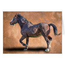 PRANCING HORSE CARDS