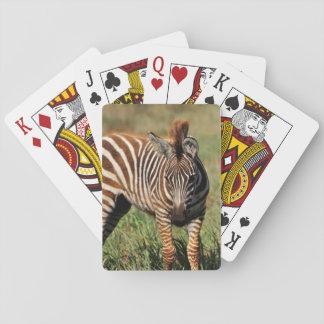 Prancing Zebra Playing Cards