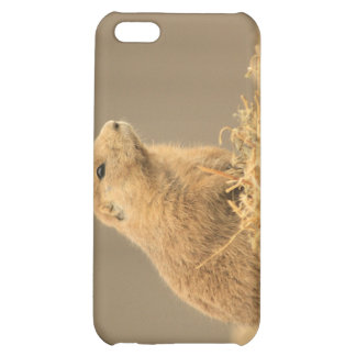 Prarie Dog Ain't I Cute Cover For iPhone 5C