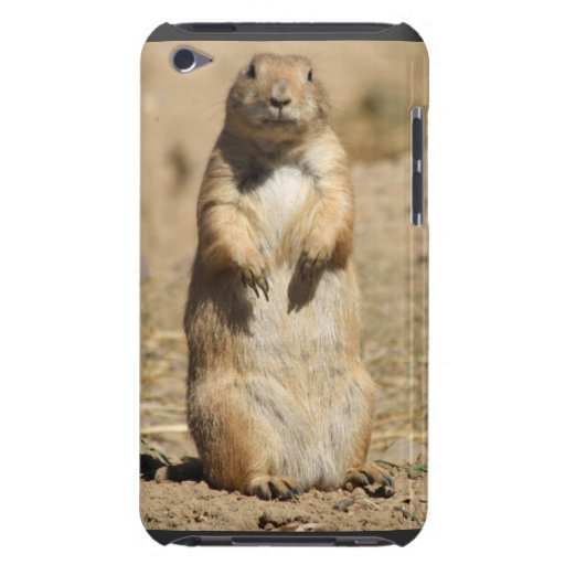 Prarie Dog iPod Touch Cover
