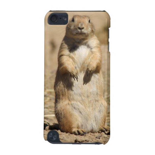 Prarie Dog iPod Touch 5G Cases