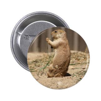 Prarie Dog Eating Grass Button