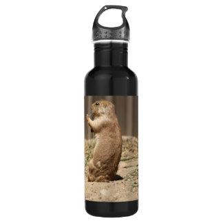 Prarie Dog Eating Grass 710 Ml Water Bottle