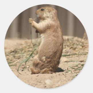 Prarie Dog Eating Grass Sticker