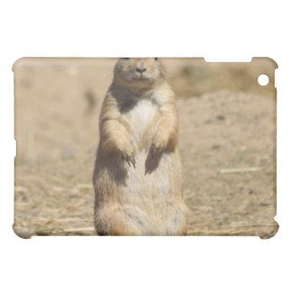 Prarie Dog iPad Mini Cases