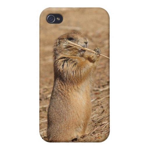 Prarie dog cover for iPhone 4