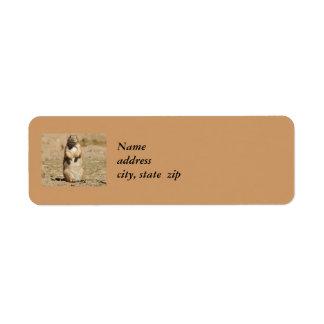 Prarie Dog Return Address Labels