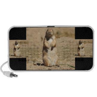 Prarie Dog Travelling Speakers