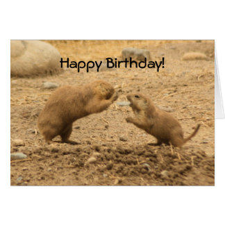 Prarie Dogs Give Me Some Skin Greeting Card