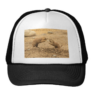Prarie Dogs Give Me Some Skin Hats