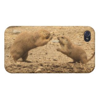 Prarie Dogs Give Me Some Skin iPhone 4/4S Cases