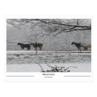 Prattville Alabama Postcard