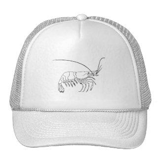 Prawn Art Mesh Hats