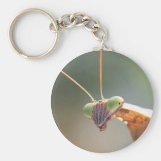 Praying Mantis 04 Key Ring