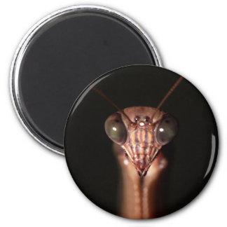 praying mantis 6 cm round magnet