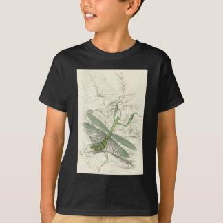 Praying Mantis, Mantis Religiosa Shirt