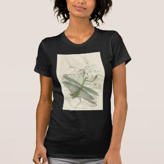 Praying Mantis Mantis Religiosa T-shirts