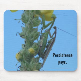 Praying Mantis Pair on Mullein Plant Mouse Pad